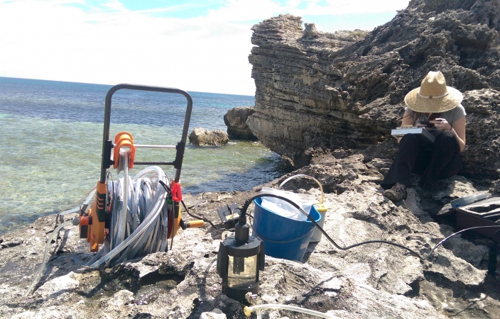 Marine science postgraduate students researching on rock at beach